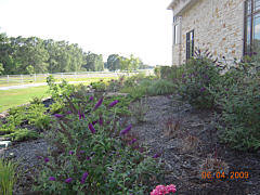 Landscaping Project - Houseside Mulch Beds